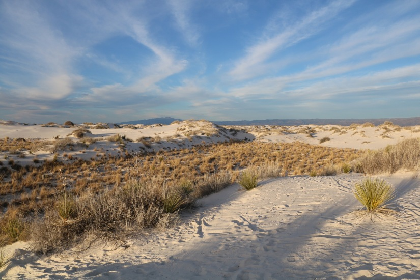 A Few Days at White Sands National Monument